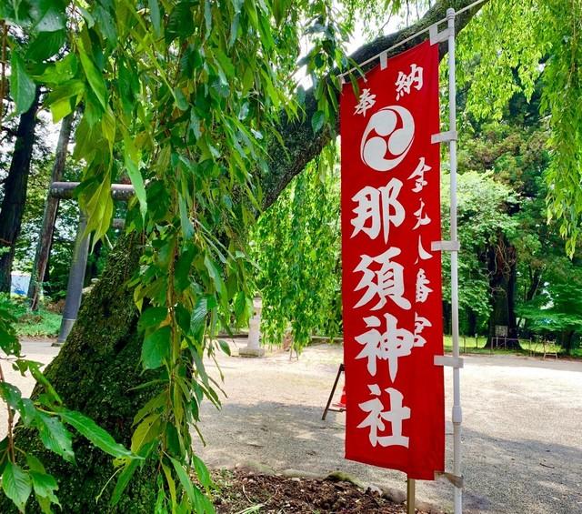 20190622栃木応援&美山荘_190624_0011.jpg